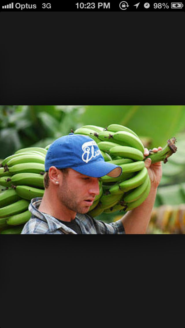 Phil Hughes Australian Cricketer His family have. Banana Farm