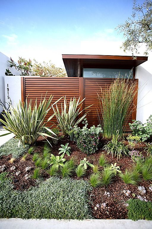 nice use of texture and height in a xeriscaped garden