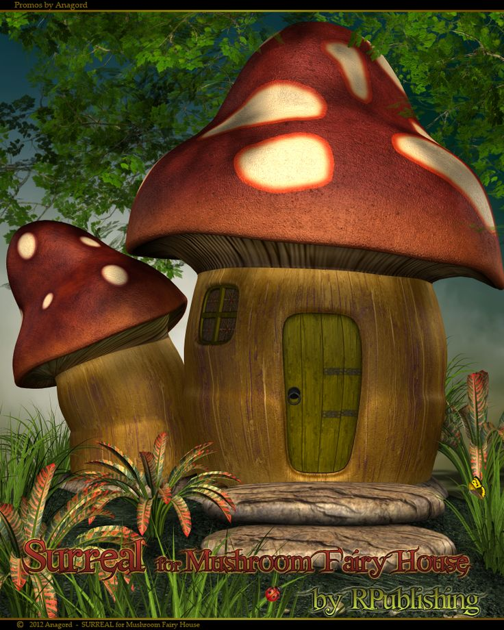 SURREAL for Mushroom Fairy House