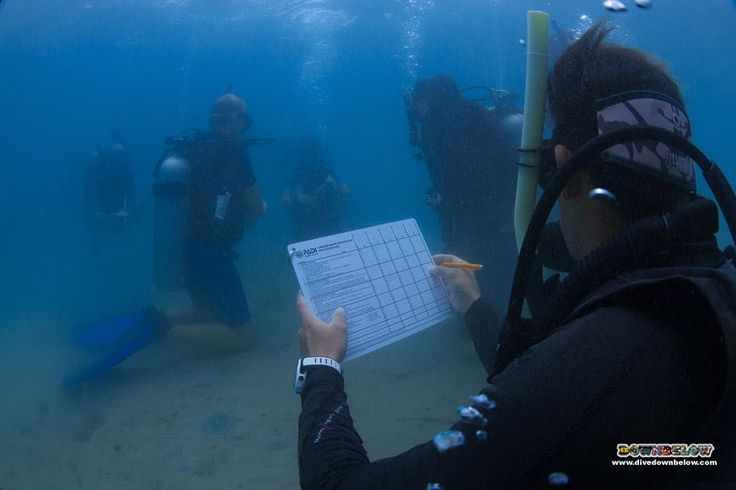 Pablo evaluates Dominik for conducting the remove and replace weight belt underwater skill...