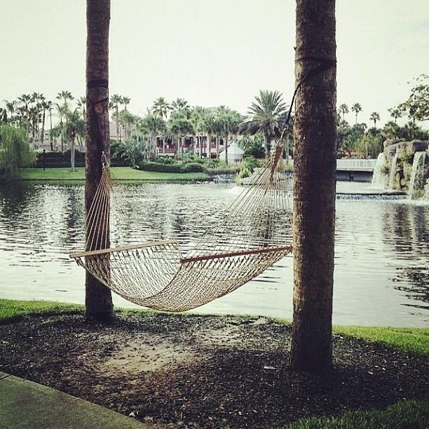 I'm pretty sure I wouldn't mind taking a quick nap on a hammock in Florida! #PotentialistCanada