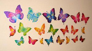 e-baby-store Butterfly Wall, Furniture Stickers For Nurse... https://www.amazon.co.uk/dp/B00G2HVOMS/ref=cm_sw_r_pi_dp_x_jtjsybXW4P4GH