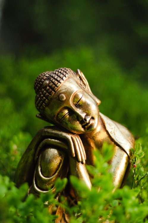 "I think this is the first Buddha I have looked at and said, ""Awww!"" I really like this one."