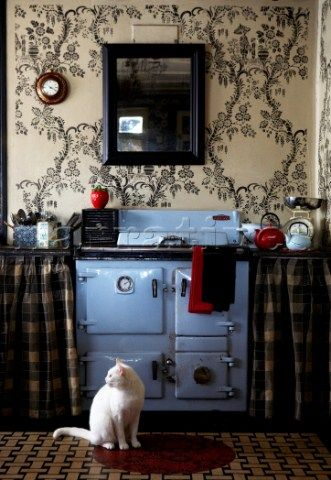 Chic And Cozy Cottage Kitchen Cottages Kitchens Kitty Cat Plaid