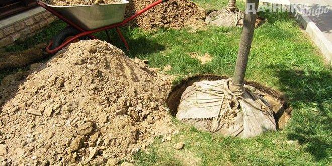 Готовим почву для посадки плодовых деревьев - Подробности: http://dachniki.info/gotovim-pochvu-dlya-posadki-plodovyx-derevev-3363.html