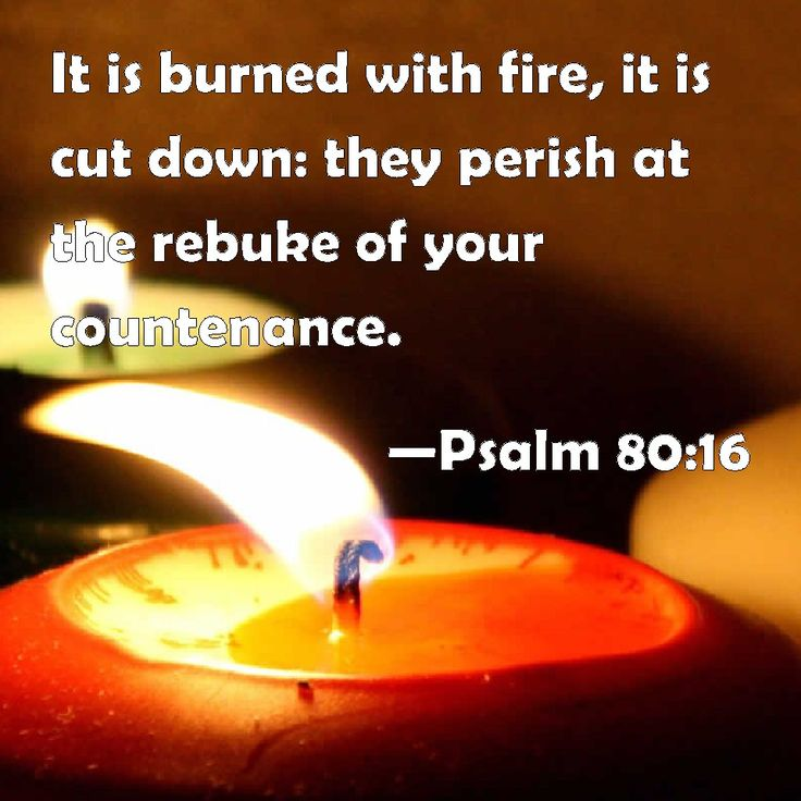 Psalm 80 and 16    -   It is burned with fire, it is cut down: they perish at the rebuke of your countenance.