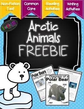 These are free sample pages from our Arctic Animals unit.  It includes text about polar bears, polar bear diagram, polar bear questioning page and a follow-up writing sheet.  We hope you enjoy our work.  Feedback (especially on freebies) is always appreciated!
