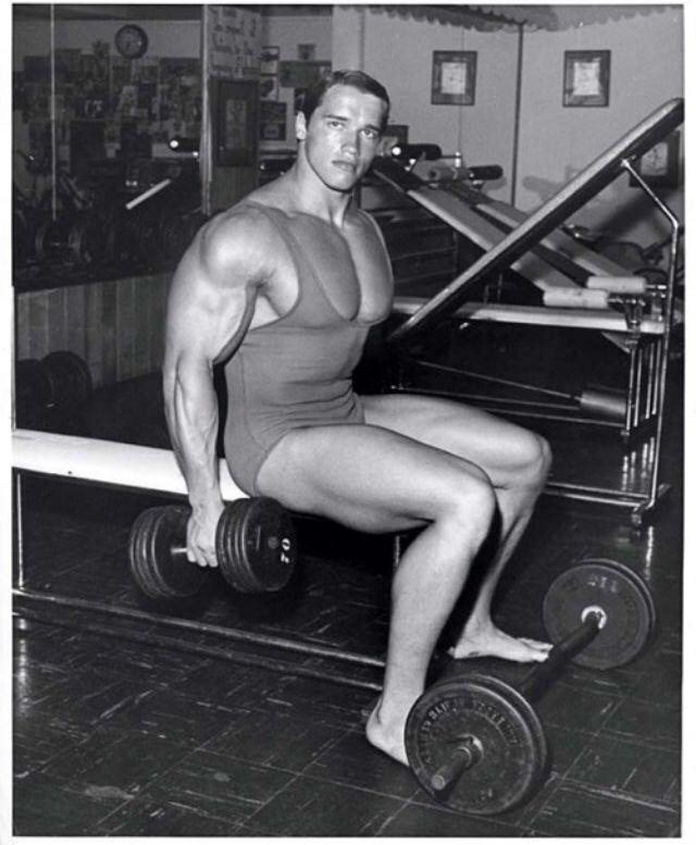 87 best Arnold images on Pinterest Bodybuilding, Fit motivation - fresh arnold blueprint day 11