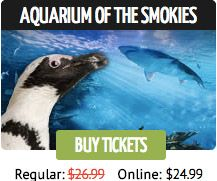 tennessee aquarium printable coupons 17 best ideas about gatlinburg coupons on 25068