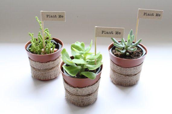 Plant Me Hessian / Burlap Wedding Favours or Bonbonniere - Set of 20 (Country / Eco / Garden Props Decor) Australia on Etsy, $49.95 AUD