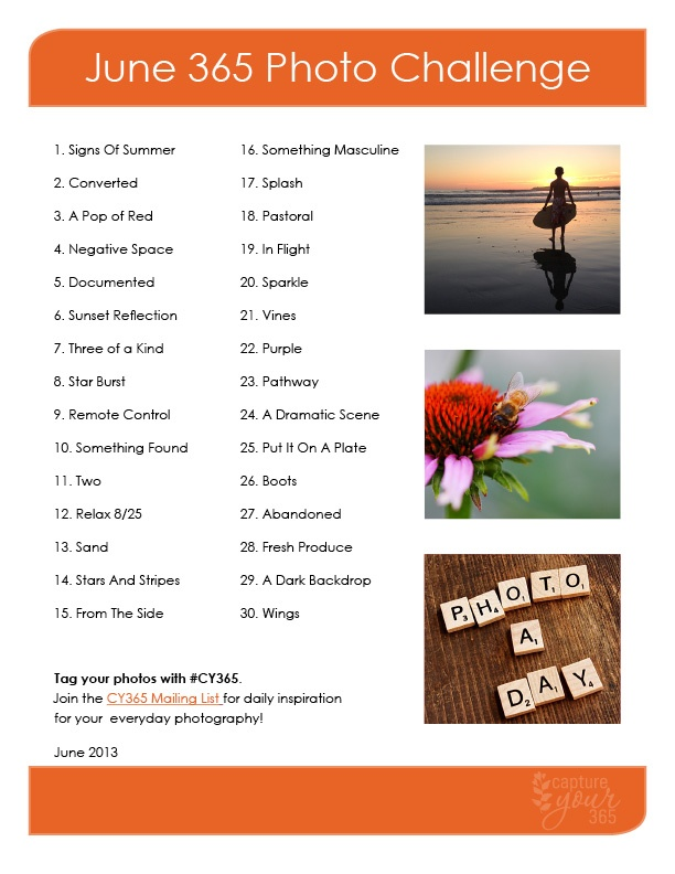 June CY365 Photo Challenge List