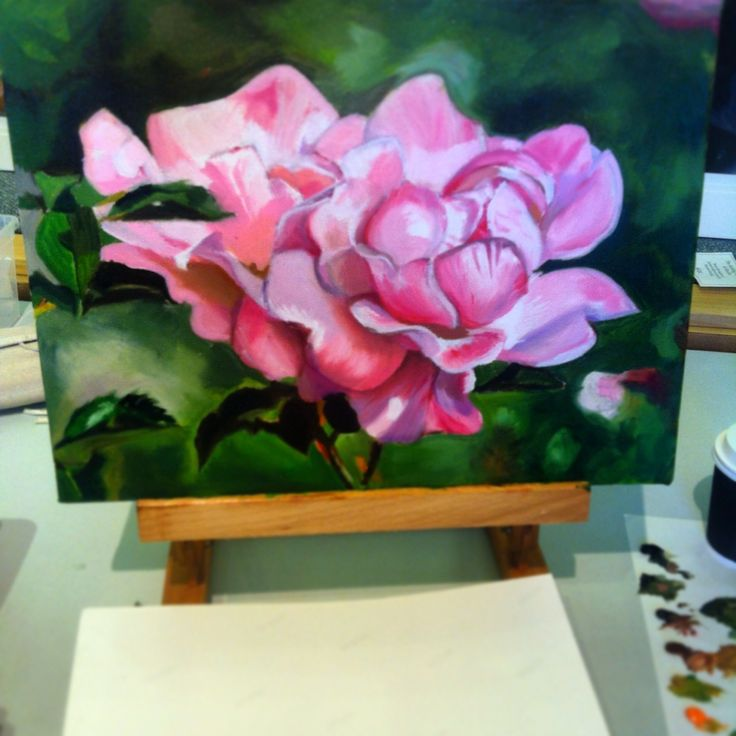 Rose oil on canvas SOLD