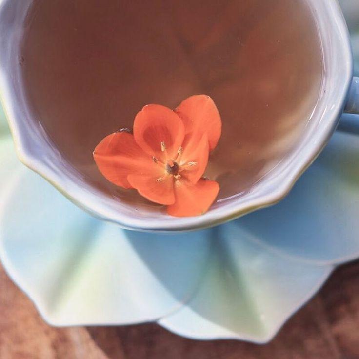 Dagdromen met een kopje thee.