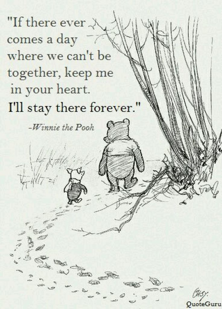 'Ik word nooit moe, met mijn berenvriend Winnie de Poeh!', kennen we de theme song van onze favoriete teddybeer nog?
