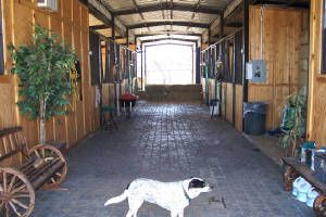horse barns with living quarters | Photos of a horse barn with living quarters