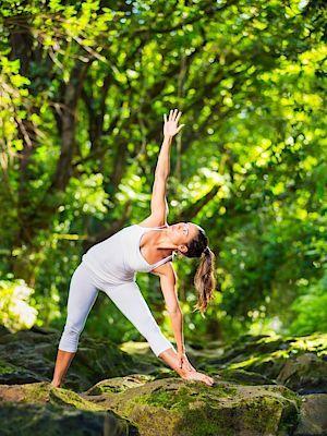 Kardio cvičení navíc zvyšuje průtok krve do mozku, která mu tak dodává potřebný kyslík. Mozek totiž pohltí 20 % veškerého kyslíku v těle