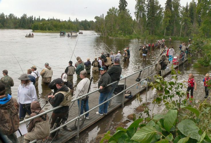 Combat fishing cunning plans pinterest for Battle fish 2