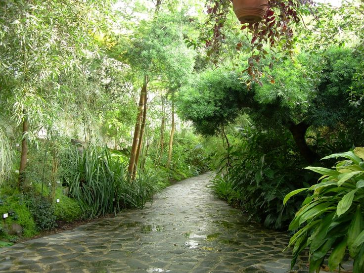Teplice: Botanická zahrada