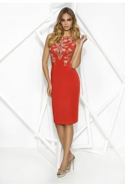 Cabotine burnt orange dress with gold lace design. Product code: 5007897