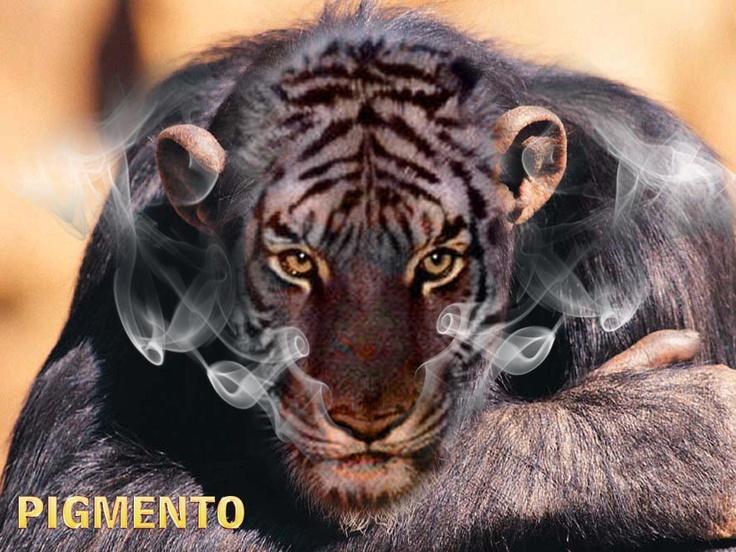 mi mono