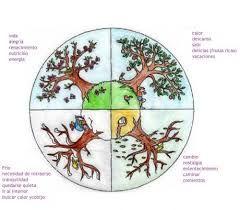Resultado de imagen para ciclo hormonal feminino sagrado feminino
