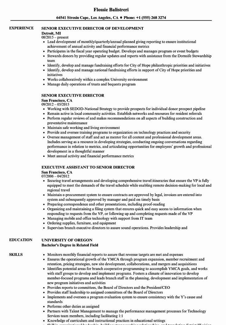 23 It Director Resume Examples in 2020 Resume examples