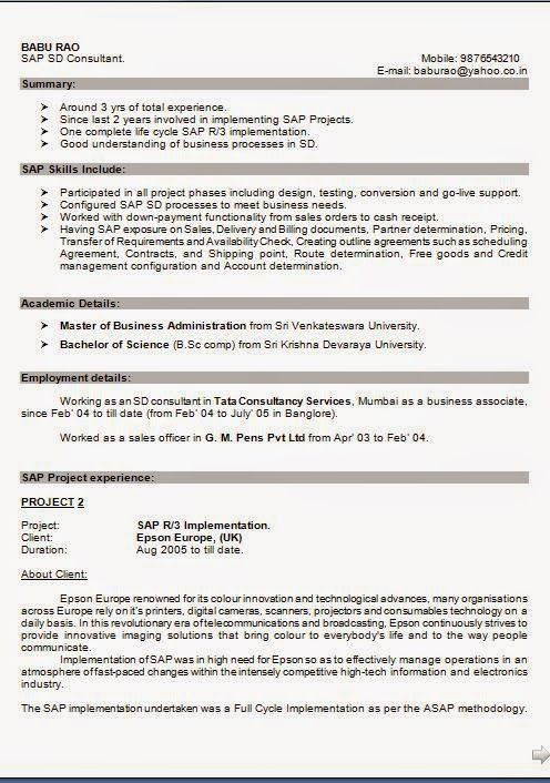 how to make a cv free Download Free Excellent CV   Resume - sap sd consultant sample resume