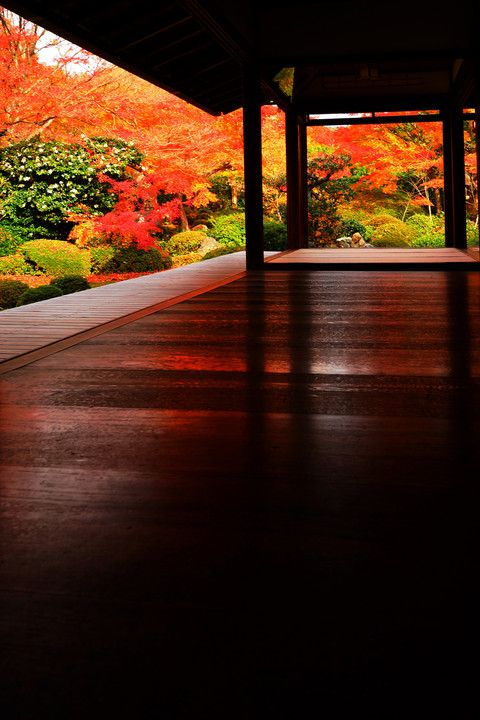 Genko-an temple, Kyoto, Japan 源光庵. So incredibly beautiful with all the shoji screens/walls removed.