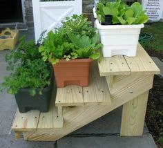 Stair step plant stand. Something like this but longer for all of the potted plants.