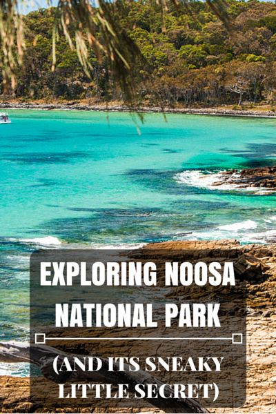 Noosa National Park is the most visited National Park in the country with more…