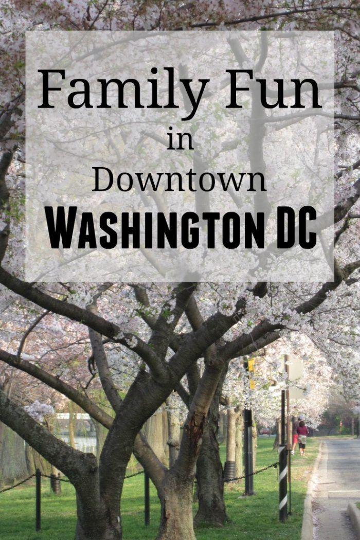 Family Fun in Downtown Washington DC 18