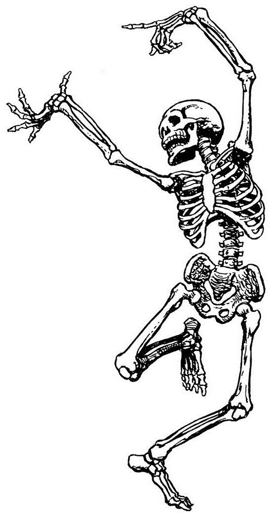 автомобиль скелеты танцуют картинка нужно