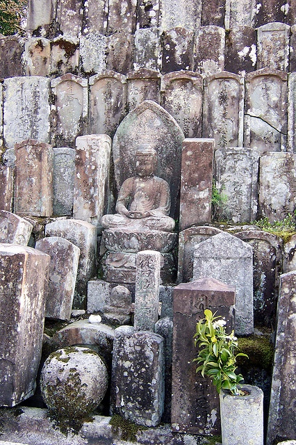 Some Buddhas at the Shinyo-do cemetary. Are they below, standing?  Close together.