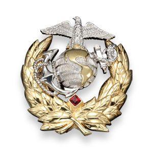 U.S. Marine Corps Pin   Ann Hand