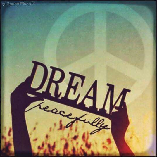 Dreamer Quotes Wallpaper 225 Best ☮ Daydream Believer ☮ Images On Pinterest Dream