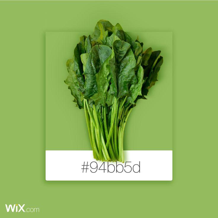 Color Palette Inspiration| Salad Green | # 94bb5d