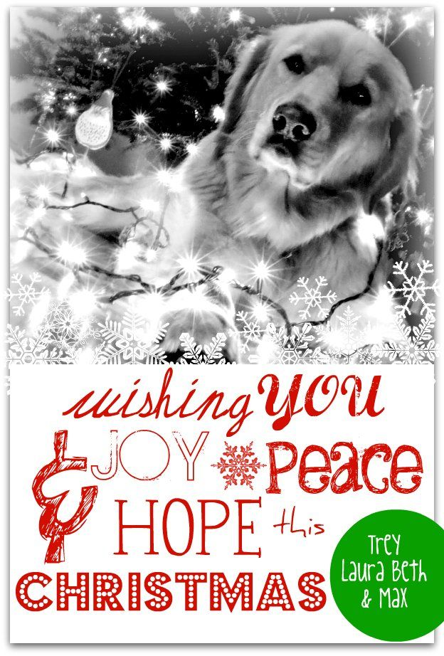 Christmas Card | A Step In The Journey