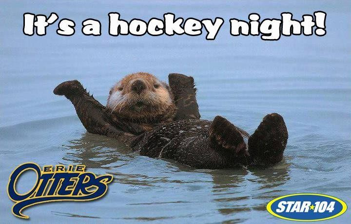 It's a Hockey Night (Erie Otters)