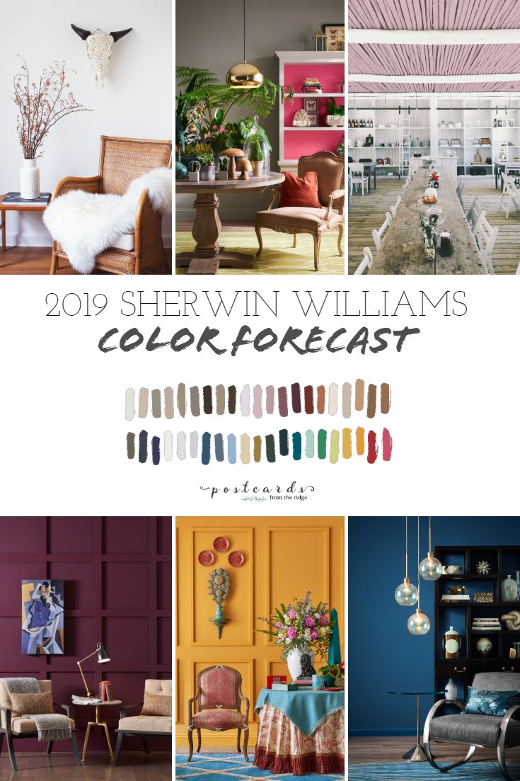 2019 paint color forecast from sherwin williams paint colors rh pinterest com