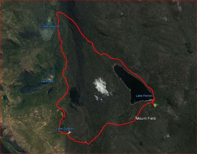 Bushwalking and Hiking at Lake Webster Circuit, Tasmania