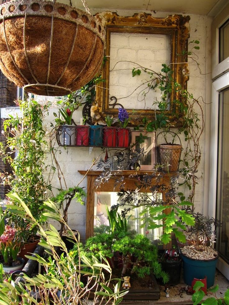 urban vegetable garden for small spaces balconies luv the picture frame idea