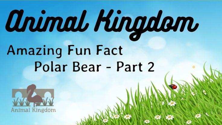Animal Kingdom - Amazing Fun Fact about Polar Bear - Part 2