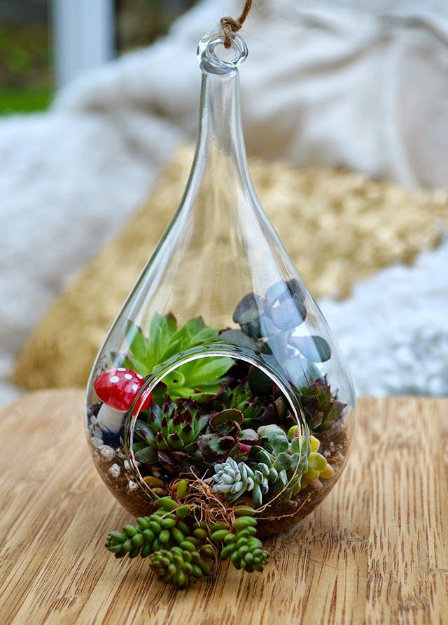 How to make your own Succulent Terrarium - living artwork that will look lovely in your own home or given as a gift! #succulents