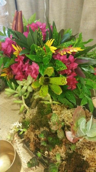 Going Tropical New Beach Wedding Display