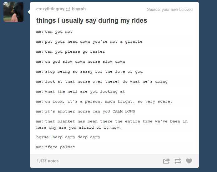 Things I Usually Say During My Rides *herp derp derp derp*