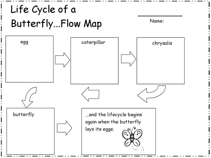 71 best thinking maps images on Pinterest Thinking maps, Lion - Flow Map Printable