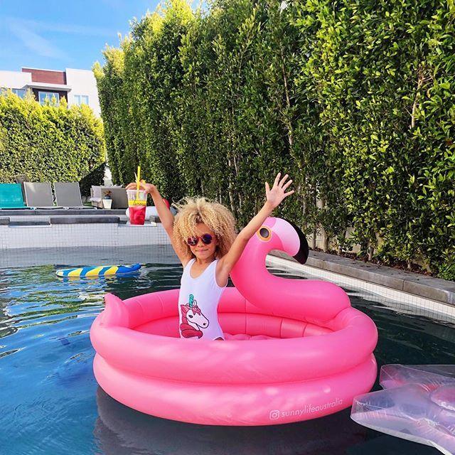 Backyard Pool Flamingo Stellaandblaise Swimming Pool Designs Small Swimming Pools Pool Designs