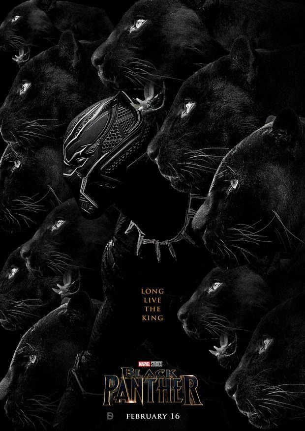 Black Panther Animal Hd Wallpaper New Black Panther Poster 30 Printable Posters Free Download Black Panther Black Panther Marvel Panther