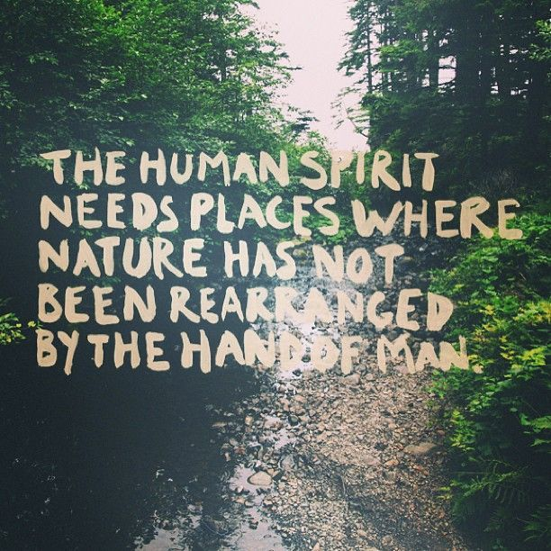 Inspirational Quotes About Life And Nature: Camping Tips And Organising