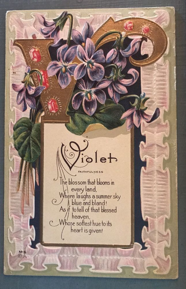 Violet~Flower Meaning~Vintage Antique Embossed Nash Greetings Postcard-g133